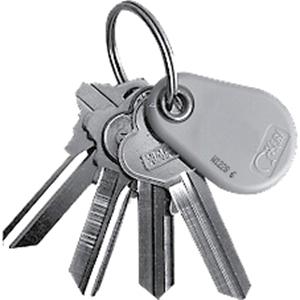 Keri Systems NXT-K-50 Proximity Key Tag