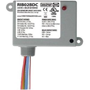 Functional Devices RIB02BDC Relay