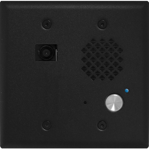 Viking Electronics Double Gang Entry Phone with Video and Enhanced Weather Protection, Black Finish