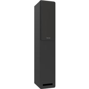 Proficient Audio LFS6 Floor Standing, Cabinet Mount Speaker - 125 W RMS - Matte Black