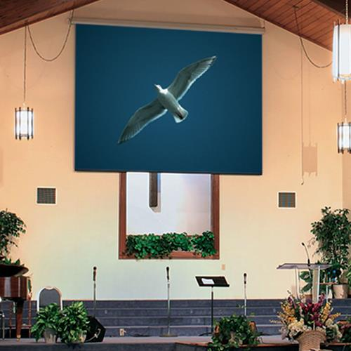 "Draper Targa 100"" Electric Projection Screen"