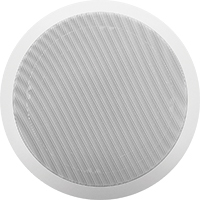 Voip Ceiling Speaker With Talk Back And Blue Tooth